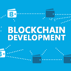What does it takes to be blockchain developer