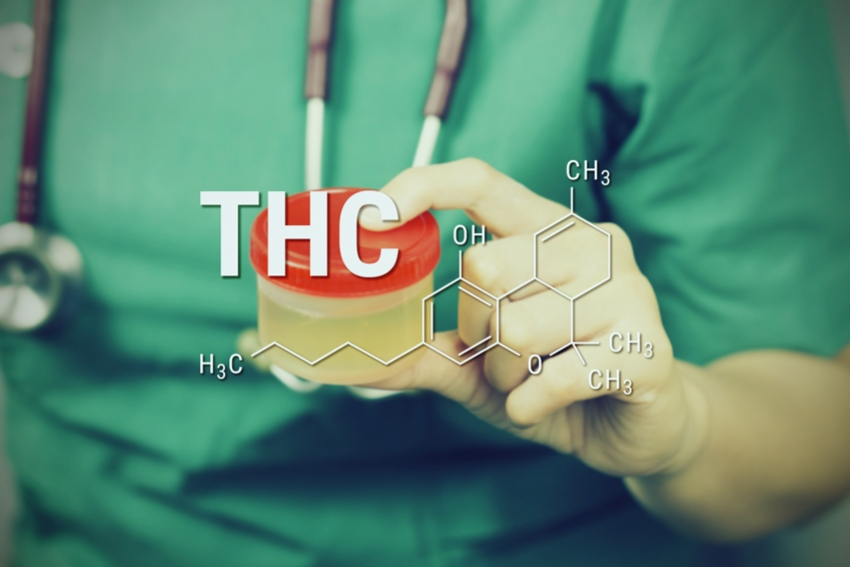 THC from your body